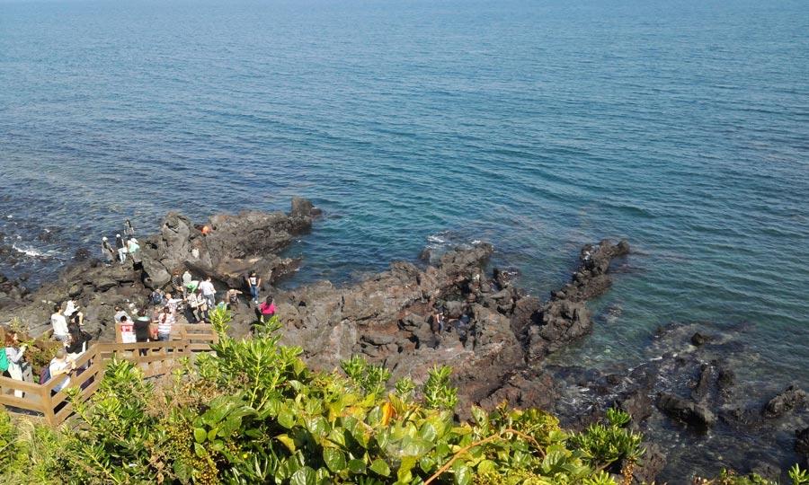 Panduan Pelancong Muslim untuk ke Jeju