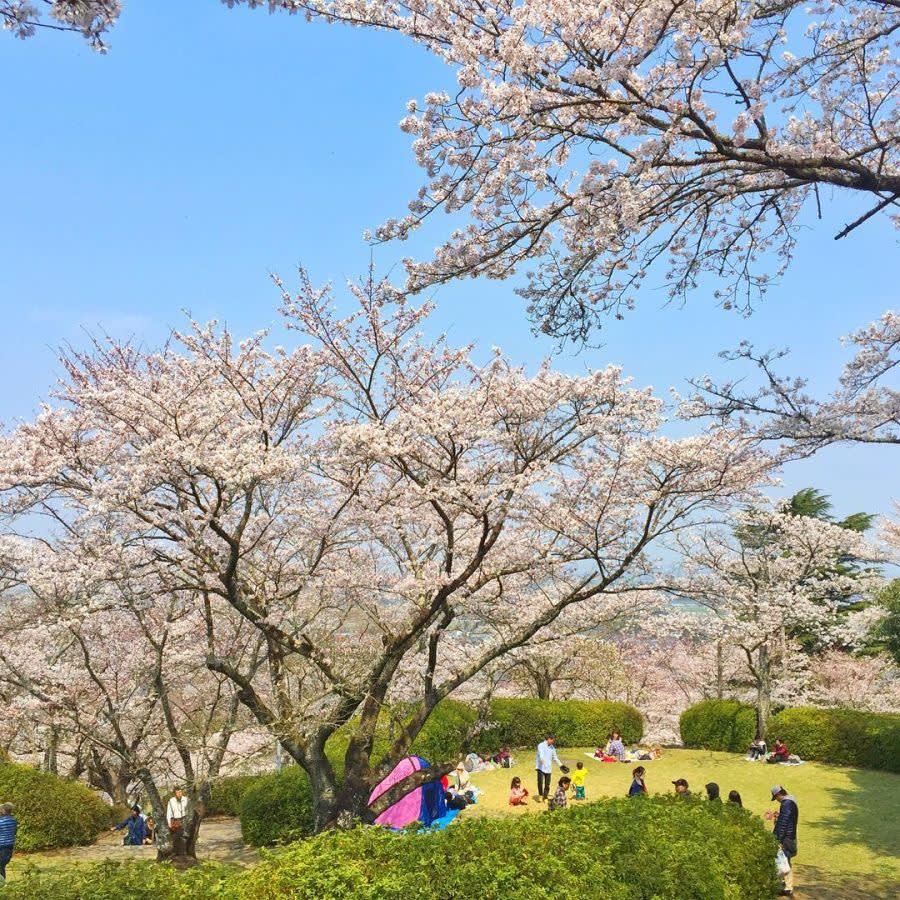 Membongkar Fukuoka: 8 Sebab Mengapa Anda Perlu Melawat Salah Satu Kota Di Jepun Ini
