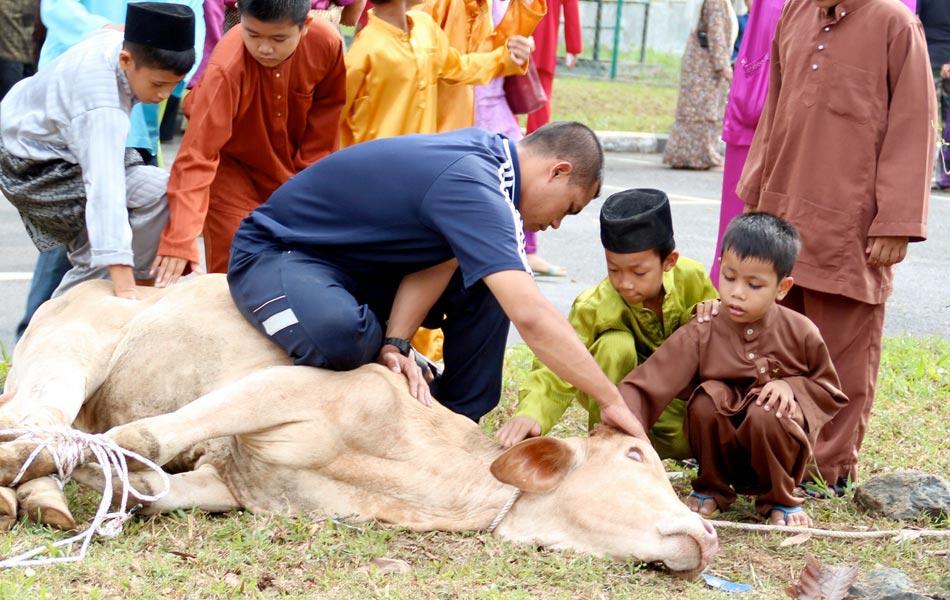 Adakah Sah Kanak-kanak Menyembelih Haiwan Korban